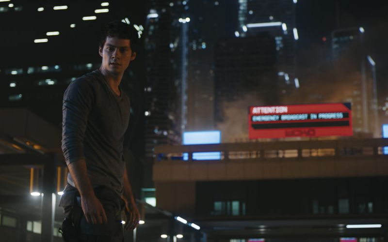 death cure torrent