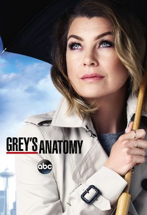 Grey's Anatomy Season 14 download torrent